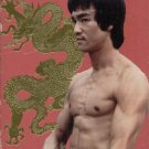 BRUCE LEE 2-TAPE SET--VHS