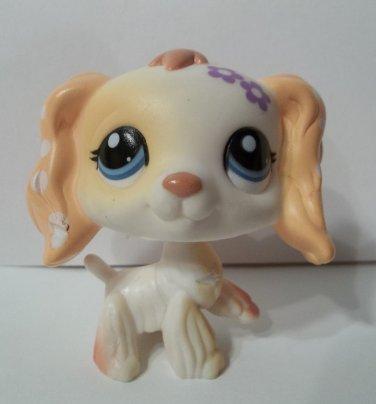 Littlest Pet Shop Spaniel dog # 1615 white tan polka dot purple flowers