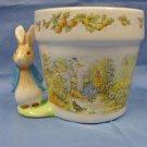 Vintage Beatrix Potter Peter Rabbit Planter