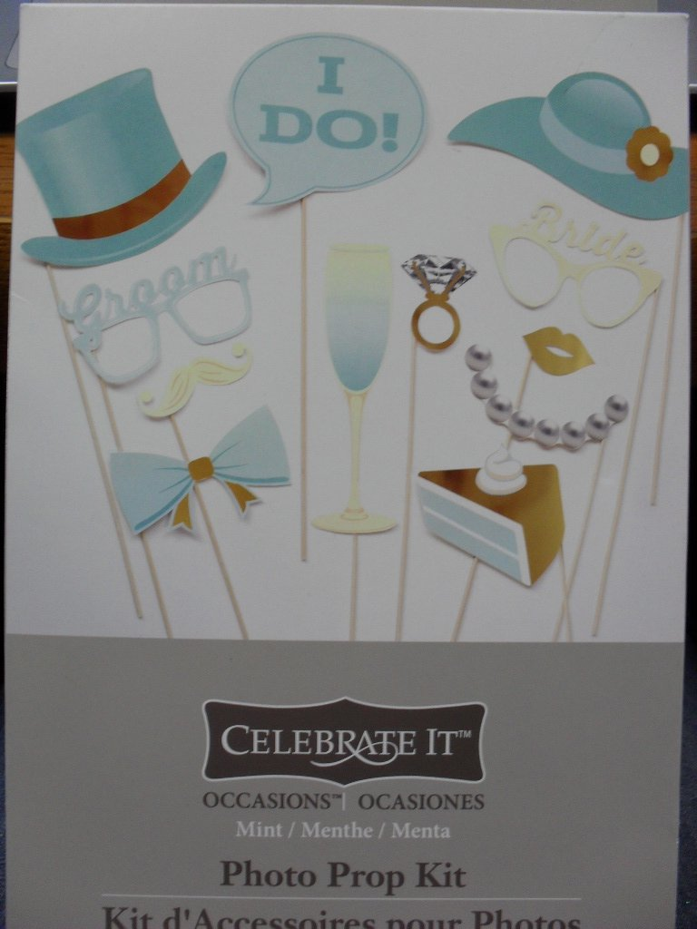 Celebrate It Wedding Photo Prop Kit - Mint Color