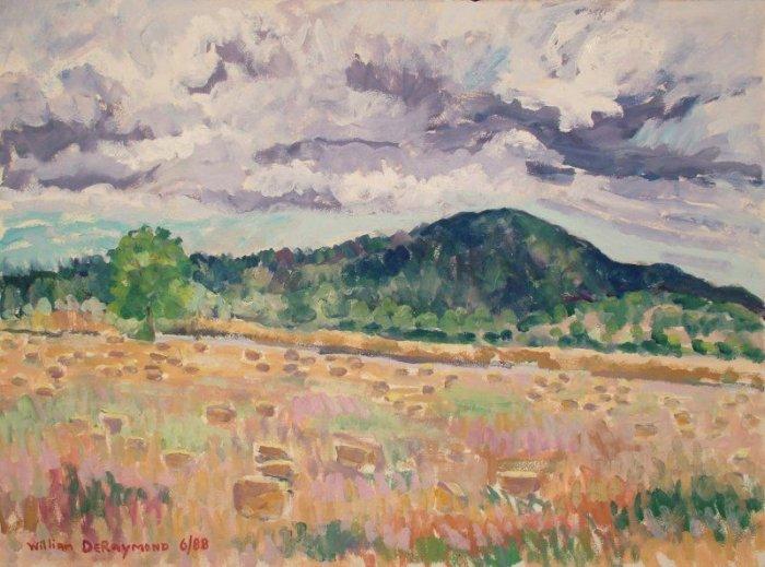 DPP landscape 8al