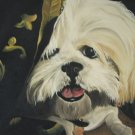 Pet Portrait - Oil on Canvas - 1 Pet 16 x 20 - PRoc11620