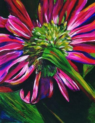 Pink Daisy - NW90151
