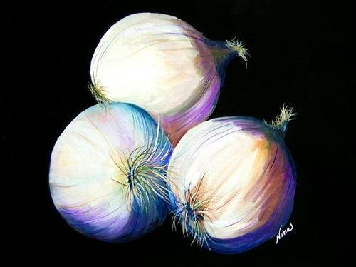 Onions - NW90206