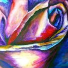 Rose Print - NWrp