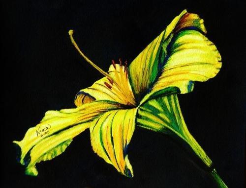 Yellow Lily Print - NWlp