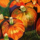 Pumpkin Patch Print - NWppp