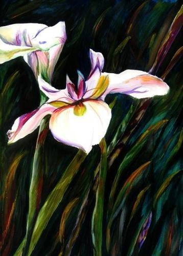 White Lily Print - NWwlp