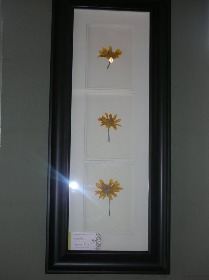 Black Frame with Sunflowers - CRsf