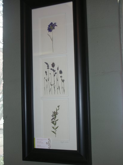 Black Frame With Lavenders - CRla