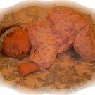 Corey Ann Reborn Doll - MGca