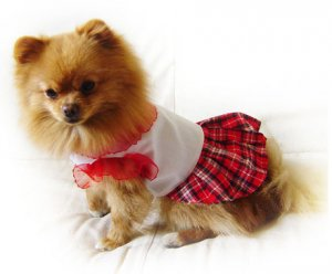 Red and White  Dog Dress ~XS~