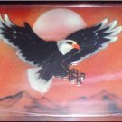 AIR BRUSHED EAGLE OVER MOUNTAINS LICENSE PLATES