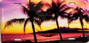 AIR BRUSHED SUNSET SUNRISE ON BEACH WITH HAMMOCK LICENSE PLATES