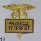 New Physical Therapist Gold Inlaid Pin Caduceus 3512G