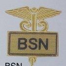BSN Nurse Nursing Emblem Gold Inlaid Lapel Pin 3516G