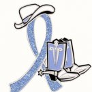 Anorexia Nervosa Pin Periwinkle Blue Ribbon Cowboy Western Boots Hat