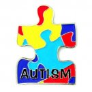 Autism Asperger Pin Awareness Colored Puzzle Piece Shape With Lettering New