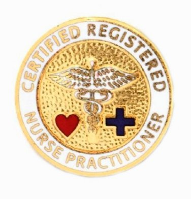 Nurse Practitioner Pin Certified Registered Emblem Graduation NP Nursing New