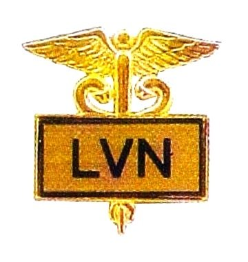 LVN Lapel Pin Licensed Vocational Nurse Inlaid Framed Caduceus Gold 3506G New
