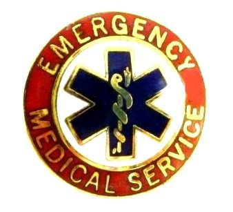 Emergency Medical Service Pin EMS Collar Device Red Gold Star of Life 55G2 New