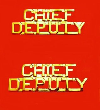 Chief Deputy Collar Pin Device Set Sheriff Department Gold Cut Out Letters 2212G