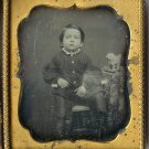 Boy with a Toy Poodle Daguerreotype
