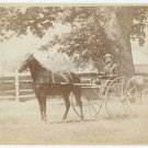 Two Cabinets of Horse and Buggy