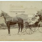 Horse and Buggy Oversize Cabinet