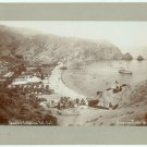 Catalina Island Silver Photograph