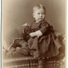 Girl with a Toy Elephant Cabinet Card