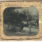 Man on a Horse and Carriage Ambro