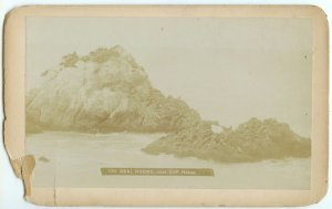 Seal Rocks in San Francisco Boudoir Card