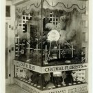 Floral Display Window Silver Photograph