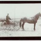 Man on a Flatbed Wagon and Horse