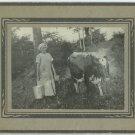 Fresh Milk Silver Photograph