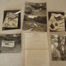The Art of Camouflage Silver Photographs