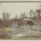 Logging Scene with Hoist Cabinet Card
