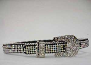 Blinged Out Dog Collar - Covered in Multicolored Crystals  Rhinestones