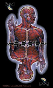 Tool Vinyl Sticker Skinless Logo