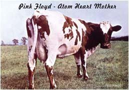 Pink Floyd Poster Flag Atom Heart Mother Tapestry