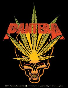 Pantera Vinyl Sticker Leaf Skull Logo
