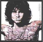 The Doors Vinyl Sticker Jim Morrison Bricks Logo