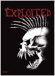 The Exploited Poster Flag Screaming Skull Tapestry