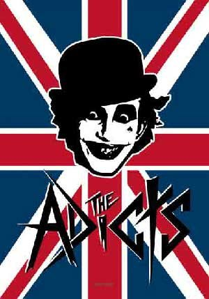 The Adicts Poster Flag UK Logo Tapestry Punk Rock Band