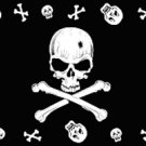 Pirate Skull Border Flag Black 3' x 5' New