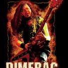 Pantera Dimebag Darrell Poster Flag Guitar Fire Tapestry