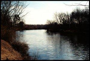 Nashua River II - 5x7