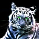 white tiger digital art