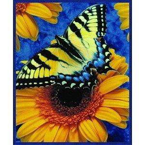 Butterfly Queen Size Blanket